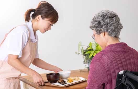 介護食コンサルタント資格